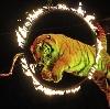 Цирки в Кисловодске